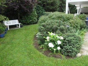 Grünpflege im privaten Bereich